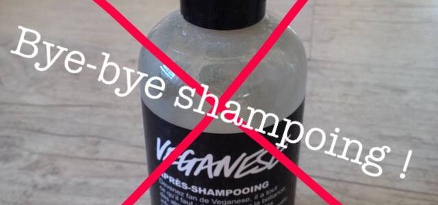 No-poo ou comment et pourquoi je ne me lave plus les cheveux