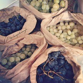 Ma cure pré-automnale : monodiète de raisin, purge & cataplasme à l'huile de ricin.